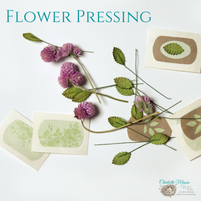 Flower Pressing - a wonderful handicrafts for nature study finds. | www.thecharlottemasonway.com
